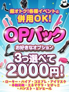 五反田ぽっちゃり風俗 BBW OPパック