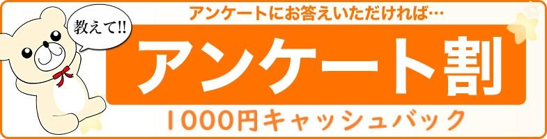 横浜ぽっちゃり風俗 BBWアンケート